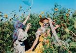 Wspólnicy. Fotograf i artysta około roku 1970. WYSTAWA
