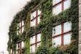 Musée du quai Branly - zielona fasada muzeum