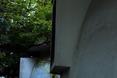 Kosmiczna baza obok Okęcia? Kopulaki – futurystyczne osiedle projektu Andrzeja Iwanickiego na warszawskiej Ochocie