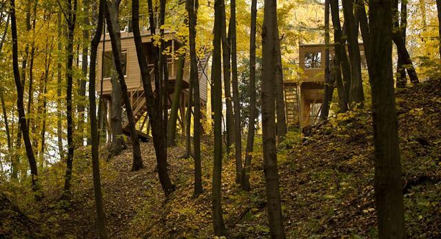 W DRZEWACH – osobliwe apartamenty w koronach drzew. Niezwykły hotel w nałęczowskim wąwozie
