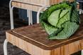 Food design według Studia Rygalik: nietypowe meble kuchenne Siemens FoodLab