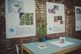 Podczas wystawy można zobaczyć nowe pomysły na architekturę wnętrz