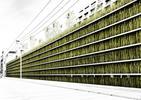 Eko projektowanie architektury w Tokio – parking pełen trawy i kwiatów