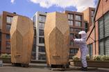 Rezydencje mieszkalne dla pszczół w Oslo autorstwa pracowni architektonicznej Snøhetta