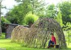 Zielone dachy, zielone ściany: Żywa Architektura
