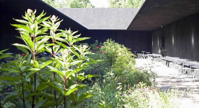 Tajemniczy ogród w Londynie – czyli The Serpentine Gallery od Petera Zumthora
