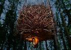 Wakacje 2013. Schronienie w sercu lasu. Zobaczice niesamowity hotel Tree Hotel