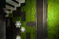Ogrody wertykalne we wnętrzach - płytki MOSStile