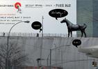 Pies czy Suka, czyli polski design opakowany w modny concept store