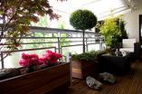 Miejskie ogrody na tarasach apartamentowców
