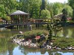 Tajemniczy ogród w japońskim stylu prosto z Wrocławia