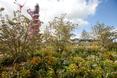 Orbit Tower wyrasta ponad zabudowę Londynu