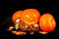 Rozmaicie wycięte wzory w skórze dyni to juz symbol Halloween i nie może go zabraknąć w naszym wnętrzu