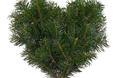 Nie trzeba kupować całego drzewka aby w mieszkaniu czuć było zapach lasu. Wystarczy odpowiednio dobrana gałązka, która od razu zmieni klimat wnętrza