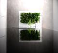 Florama- miniogród w architekturze wnętrza.