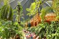 warto-zobaczyc-tropical-island-bryla-berlin/warto-zobaczyc-tropical-island-bryla-berlin_25.JPG