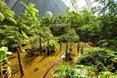 warto-zobaczyc-tropical-island-bryla-berlin/warto-zobaczyc-tropical-island-bryla-berlin_34.JPG